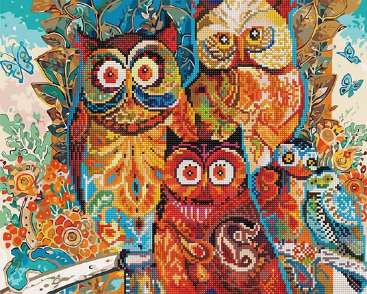 Алмазная картина раскраска Волшебные совы 40*50 см. Rainbow Art, фото 2