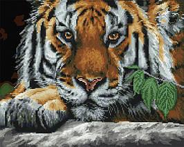 Алмазна картина-розмальовка Погляд тигра 40x50 см. Rainbow Art
