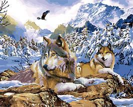 Алмазная картина раскраска Зимние волки 40*50 см. Rainbow Art