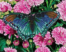 Алмазна картина-розмальовка Метелик в кольорах 40х50 см. Rainbow Art