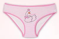 """Трусики  для девочки """"Лебедь"""", размер 2/3"""