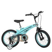 Велосипед дитячий WLN1639D-T-1F Projective, блакитний, фото 1