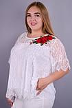 Квитка Роза. Касивая блуза plus size. Белый., фото 2