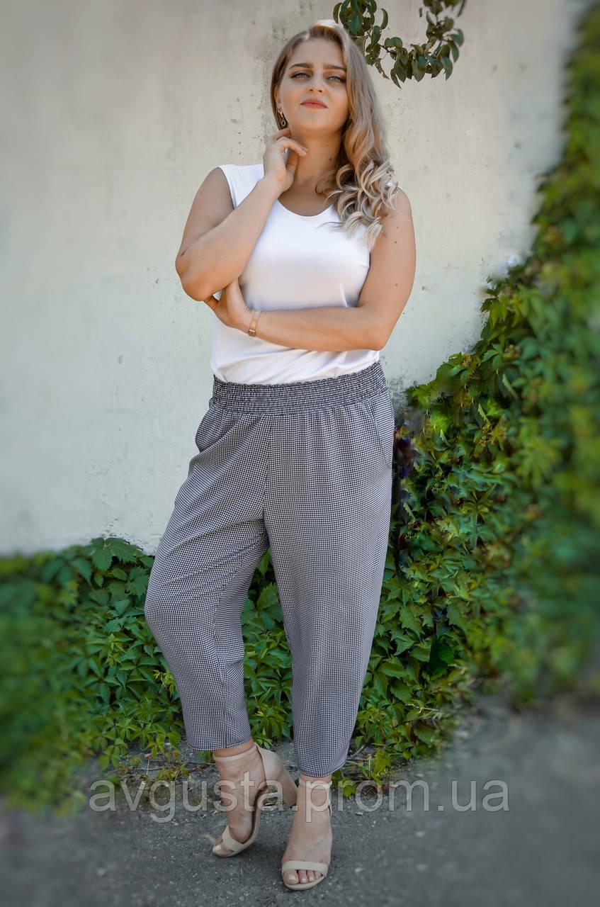 Міранда. Укорочені літні брюки великих розмірів. Чорний лапка.