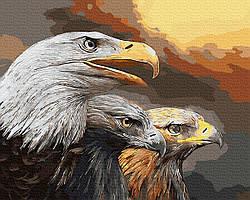 Картина по номерам Орлиный взгляд 40х50 см, BrushMe (GX9631)