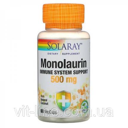 Solaray, Монолаурин, 500 мг, 60 вегетарианских капсул, фото 2