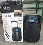 Колонка акумуляторна з мікрофоном ZPX ZX-7766 200W (Bluetooth/USB/FM/TWS), фото 5