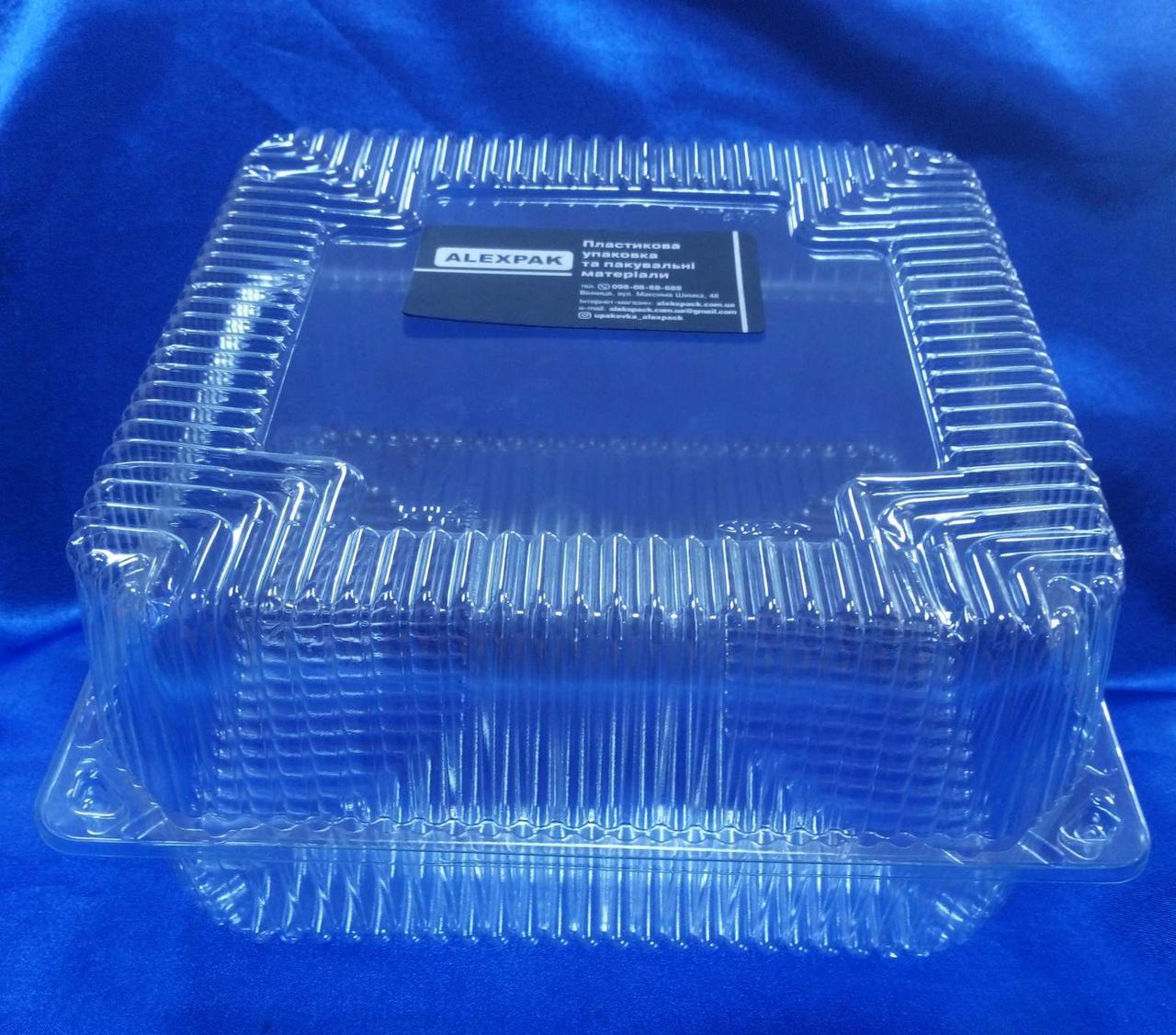 Блистер квадратный большой для тортов и других кондитерских изделий IT-480 (150 шт/ящ)ПЕТ