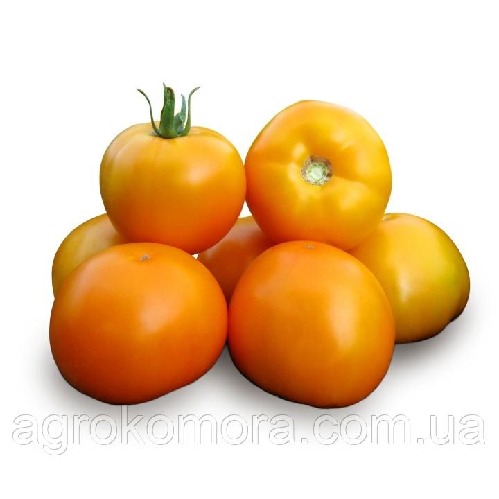 Нуксі F1 (KS 17 F1) томат жовтий детерм. 500 нас., Kitano Seeds