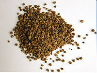 Семена кормового буряка центауер польский