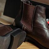 Черевики чоловічі коричневі челсі, фото 6