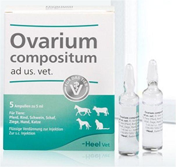 ОВАРИУМ КОМПОЗИТУМ ХЕЕЛЬ OVARIUM COMPOSITUM HEEL средство для лечения половой системы самок, 5 мл