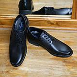 Шкіряні чорні туфлі Minardi, фото 2