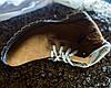 Черевики зимові замшеві Affinity руді, фото 4