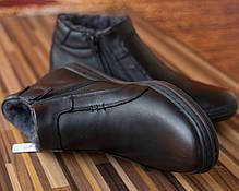 Ботинки Polbut 313 кабир, фото 2