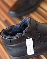 Ботинки Polbut 313 кабир, фото 3