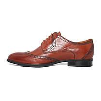 Туфлі коричневі броги, фото 3