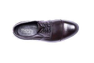 Туфлі дербі, бордо., фото 2