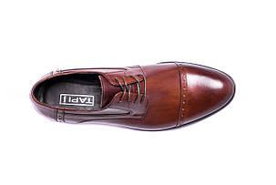 Туфлі дербі коричневі., фото 2