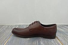 Польскі коричневі туфлі, фото 2