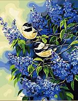 """Картина раскраска по номерам на холсте 40*50 см """"Птички на ветках сирени"""" Munglei"""