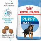 Сухой корм Royal Canin Maxi Puppy для щенков крупных пород до 15 месяцев 4 кг