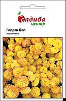 Семена Хризантема Голден Бол, 0,1 г. Hem Genetics (Голландия)