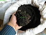 Грунт для клумбы Грунт для теплицы Торф Земля для цветника, фото 3