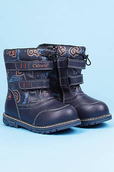 Ботинки детские зимние темно-синие Calorie 123072M