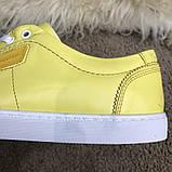 Dolce & Gabbana London Yellow, фото 3