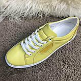 Dolce & Gabbana London Yellow, фото 4