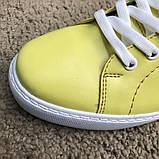 Dolce & Gabbana London Yellow, фото 6