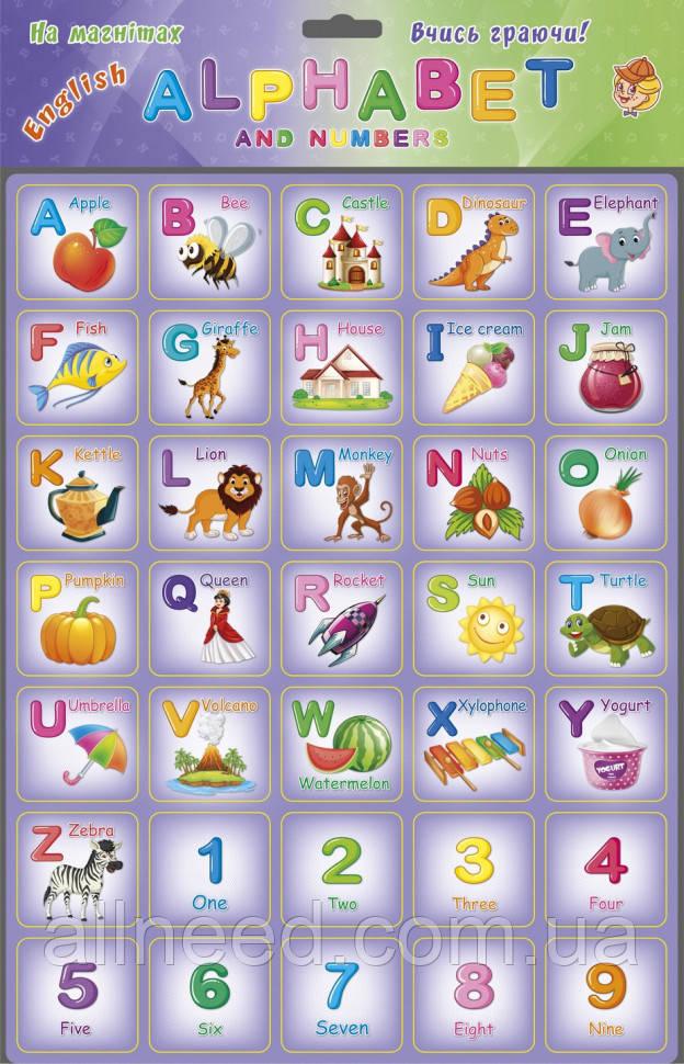 Плакат обучающий Английский алфавит Alphabet