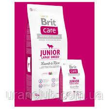 Brit Care Junior Large Breed Lamb & Rice(ягненок и рис)3 кг