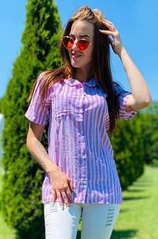 Рубашка женская розовая AAA 121270M