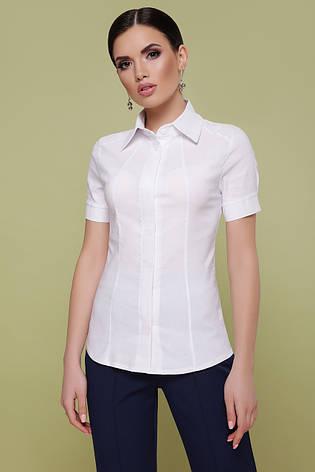 Классическая женская белая рубашка с коротким рукавом блуза Норма к/р, фото 2