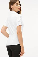 Классическая женская однотонная белая блузка с черными пуговицами и рукавами-фонариками Эльза к/р, фото 3