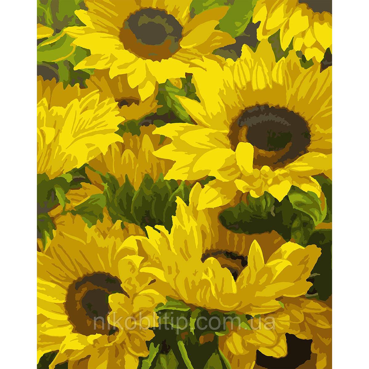 """Картина за номерами """"Сонячні квіти"""""""