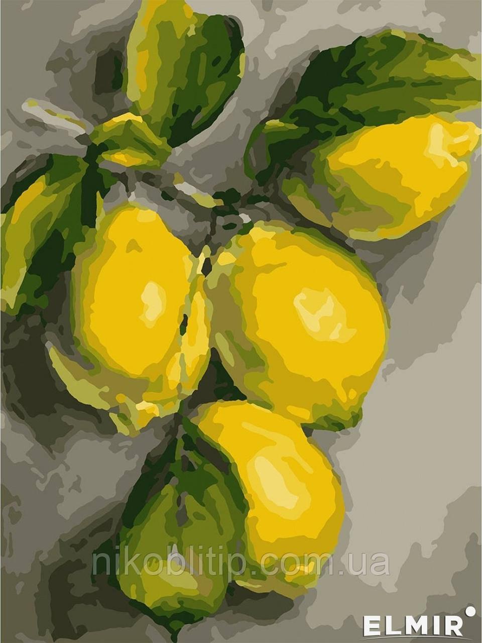 """Картина по номерам """"Гілка лимона"""""""