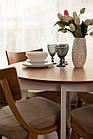 Обідній комплект: стіл Марс і стільці Диран Pavlyk ™, фото 5
