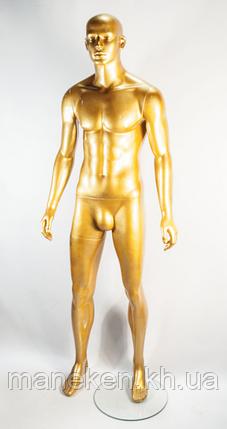 K15-8 gold, фото 2