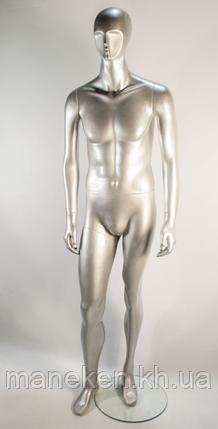 K23-22 silver, фото 2