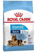 Royal Canin Maxi Starter, корм для беременных/кормящих сук крупных пород, и щенков до 2 мес., 1 кг
