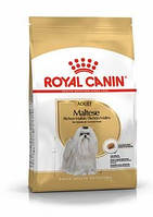 Royal Canin Maltese Adult, корм для собак породы мальтийская болонка, 500 г