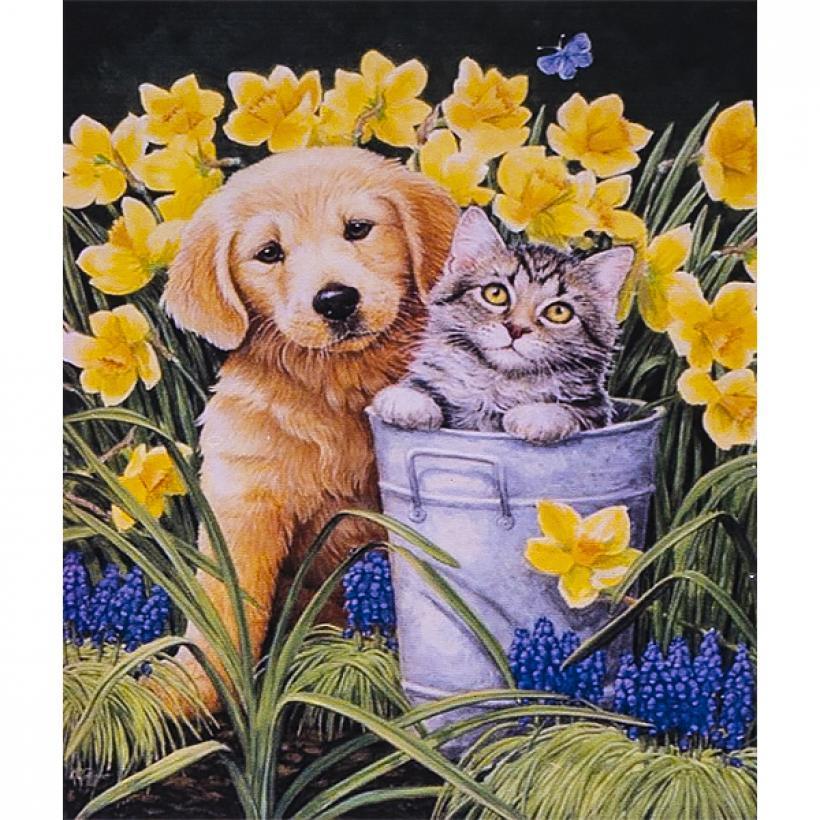 Картина по номерам 40x50см. 30321 DIY Собака и кот, в подарочной упаковке