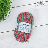 Носочная пряжа Gruendl Hot Socks Ledro, 01