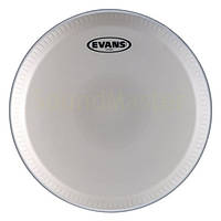 Пластики Evans EC1250
