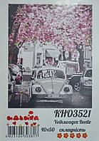Розпис по номерах Volkswagen Beetle 40х50