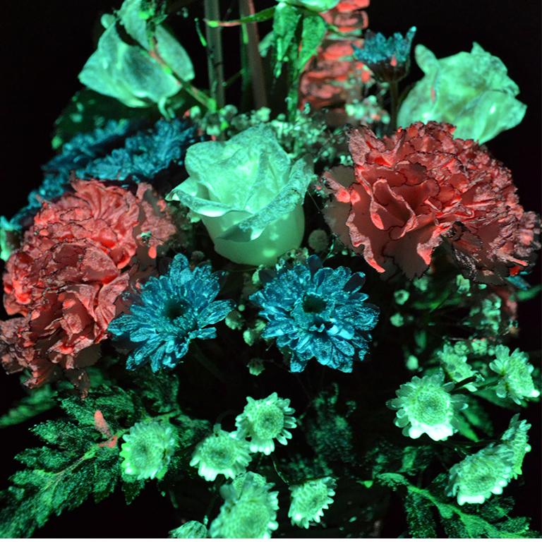 Светящаяся краска для цветов Acmelight 20 мл