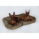 Лежак-понтон для собак Gold Sand 80x60см, фото 5
